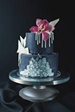 Hintergrundbilder Süßware Torte Orchidee Grauer Hintergrund Design