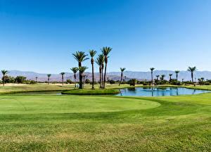 Hintergrundbilder Vereinigte Staaten Teich Acker Golf Kalifornien Palmen Rasen Borrego Springs Resort Golf Course Natur