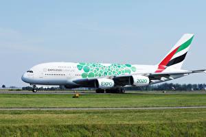 Fotos & Bilder Airbus Flugzeuge Verkehrsflugzeug Gras A380 Luftfahrt