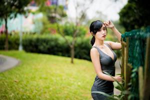 Bilder Asiatisches Unscharfer Hintergrund Posiert Kleid Dekolletee Brünette Blick junge Frauen