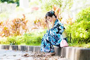 Fotos & Bilder Asiatische Bokeh Pose Sitzend Kimono Mädchens