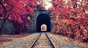 Bilder Herbst Eisenbahn Tunnel Schienen Natur