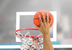 Bilder Basketball Hand Ball Bokeh