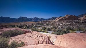 Bilder Wüste USA Kalifornien Mojave Desert