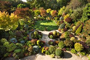 Fotos England Garten Design Rasen Strauch Walsall Garden