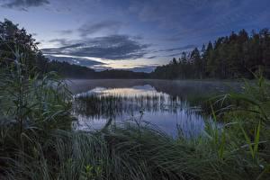 Fotos Abend See Norwegen Strengsdalsvannet Natur
