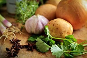 Fotos Knoblauch Kartoffel Zwiebel parsley