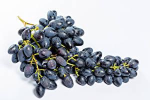 Fotos Trauben Großansicht Weißer hintergrund Blau Lebensmittel