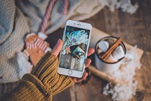 Bilder Hand Sweatshirt Smartphone Unscharfer Hintergrund Marshmallow