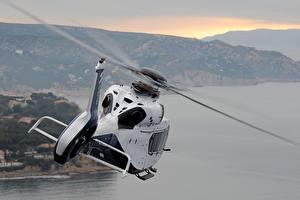 Sfondi desktop Elicottero Airbus Volo Bianco Vista posteriore H160