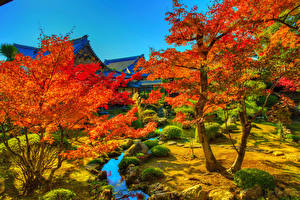 Images Japan Kyoto Autumn Trees Stream HDR Nature