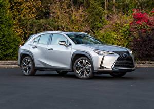 Fotos & Bilder Lexus Silber Farbe 2019 UX 250h Autos