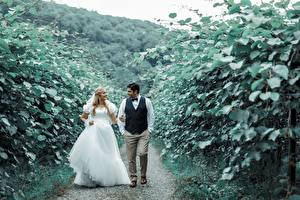 Pictures Man Couples in love Path Two Brides Gown Smile Groom Girls