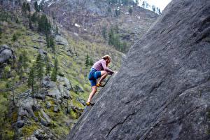 Fotos Mann Bergsteigen Felsen Kletterer sportliches