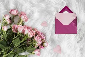 Hintergrundbilder Rose Sträuße Brief Vorlage Grußkarte Briefumschlag Blumen