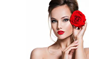 Images Roses White background Makeup Face Modelling Glance Beautiful young woman