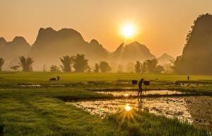 Hintergrundbilder Morgendämmerung und Sonnenuntergang Felder Gebirge Asiatische Nebel Arbeitet Natur
