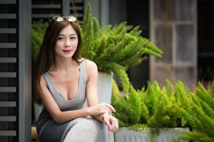 Bilder Asiatische Pose Hand Kleid Dekolletee Blick Lächeln Braunhaarige Sitzend Mädchens