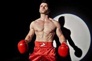 Fotos Boxen Mann Schatten Hand Handschuh sportliches