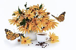 Hintergrundbilder Kaffee Schmetterlinge Stillleben Tasse Getreide Vase Weißer hintergrund Jerusalem artichoke Blumen