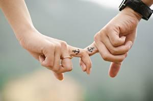 Bilder Finger Hautnah Unscharfer Hintergrund Zwei Hand Ring Tätowierung Anchor