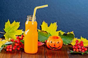 Desktop wallpapers Halloween Juice Pumpkin Rowan Boards Bottle Foliage Food