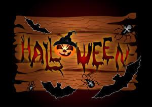 Fotos Halloween Kürbisse Vogel Webspinnen Bretter Englisches Text