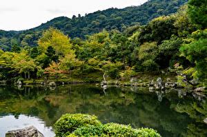 Fotos Japan Kyōto Park Teich Steine Bäume Natur