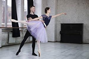 Fotos Mann Ballett Zwei Braune Haare Rock Hand junge Frauen