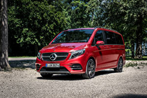 Image Mercedes-Benz Red Minivan 2019 V 300 d 4MATIC AMG Line Worldwide automobile