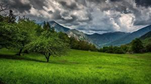 Hintergrundbilder Berg Provence Frankreich Gras Bäume Natur