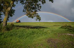 Bureaubladachtergronden Nederland Grasland Gras Regenboog Kreileroord