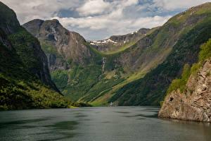 Fotos Norwegen Berg Bucht Sognefjord Natur