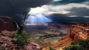 Bilder Parks USA Canyons Canyonlands National Park, Utah