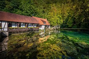 Bilder Teich Wald Deutschland Wassermühle