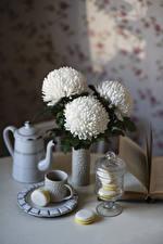Bilder Stillleben Chrysanthemen Flötenkessel Weiß Tasse Macaron Blüte Lebensmittel