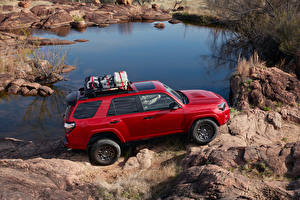 Fotos Toyota Sport Utility Vehicle Rot Metallisch 2020 4Runner Venture Edition automobil