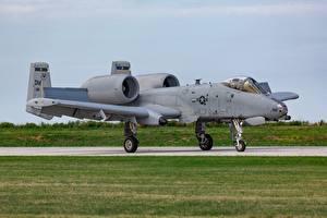 Fotos Schlachtflugzeug Flugzeuge A-10 Thunderbolt II