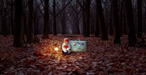 Fotos Herbst Wald Abend Blatt Kleine Mädchen Koffer Kinder