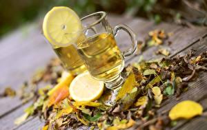 Photo Autumn Lemons Tea Leaf Cup Food