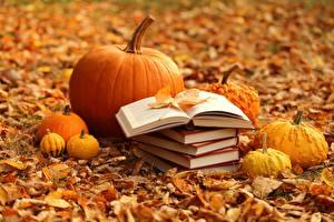 Hintergrundbilder Herbst Kürbisse Bücher Blatt Natur