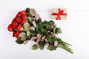 Fotos Sträuße Rosen Weißer hintergrund Geschenke Blumen
