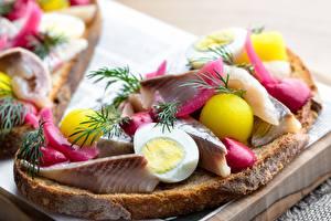Bilder Butterbrot Fische - Lebensmittel Dill Kartoffel Ei