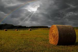 桌面壁纸,,田地,雷雲,光射线,彩虹,乾草,大自然