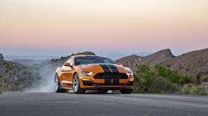 Hintergrundbilder Ford Orange Strips Mustang GT-S 2019 automobil