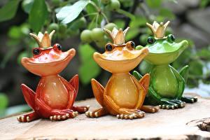 Fotos Frosche Krone Spielzeuge Drei 3 Lächeln