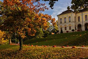 Fotos Deutschland Herbst Park Kürbisse Gebäude Bäume Blatt Ludwigsburg Natur