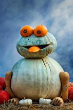 Hintergrundbilder Deutschland Kürbisse Kreative Design Ludwigsburg Pumpkin Festival