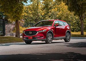 Fotos Mazda Rot Metallisch Crossover 2019 CX-5 Signature Skyactiv-D