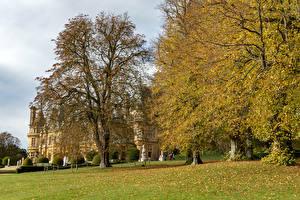 Bilder Park Herbst England Bäume Blattwerk Waddesdon Manor Natur